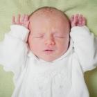 babyfotos-dresden_018