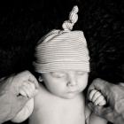 babyfotos dresden