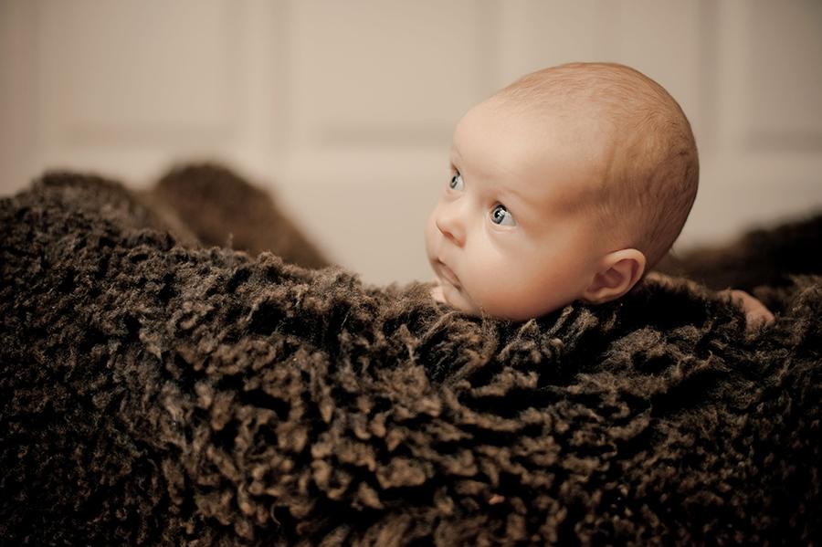 Als Babyfotograf in Dresden