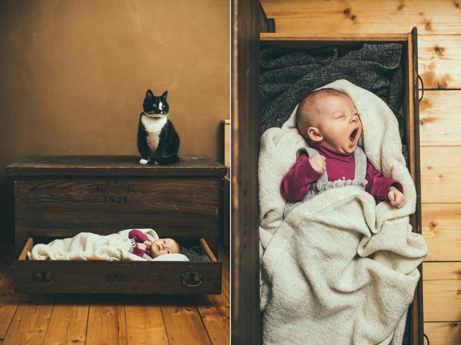 babyfotografie dresden_001